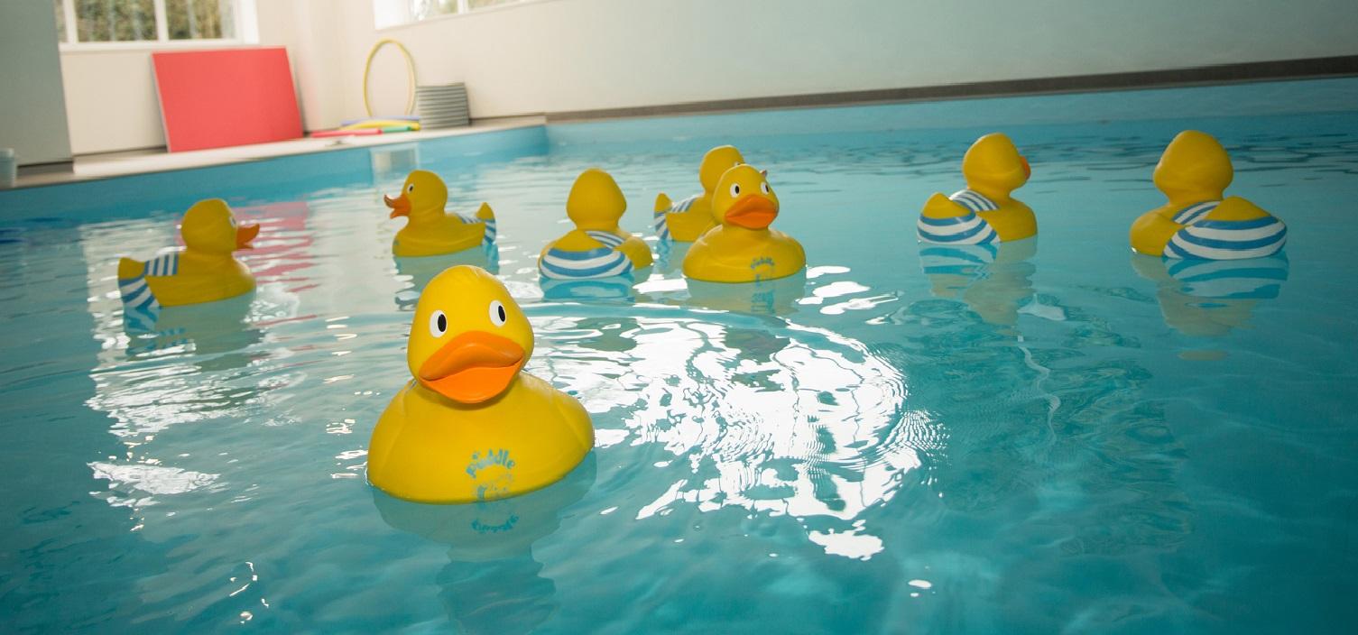 Aqua nurture hydro pool aqua nurture for Hydroponic pool